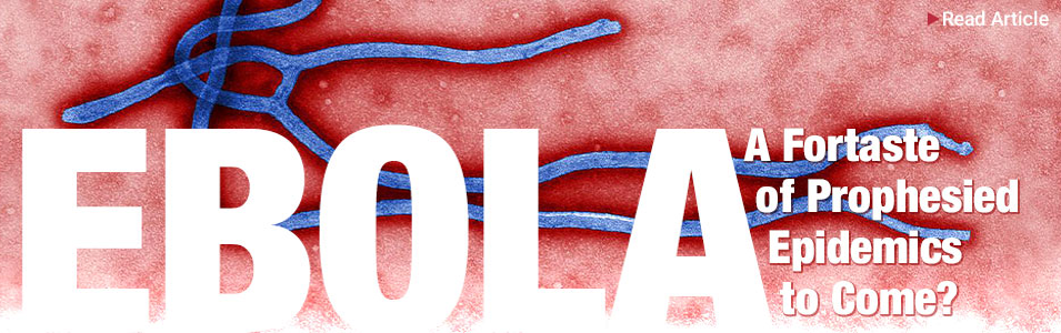 Ebola: Just A Foretaste?