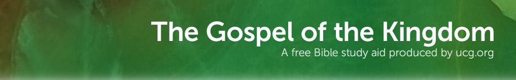 how are the gospels different